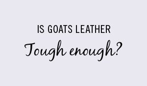 goat-leather